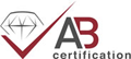 Andilog Technologies ISO 9001:2008 Certified